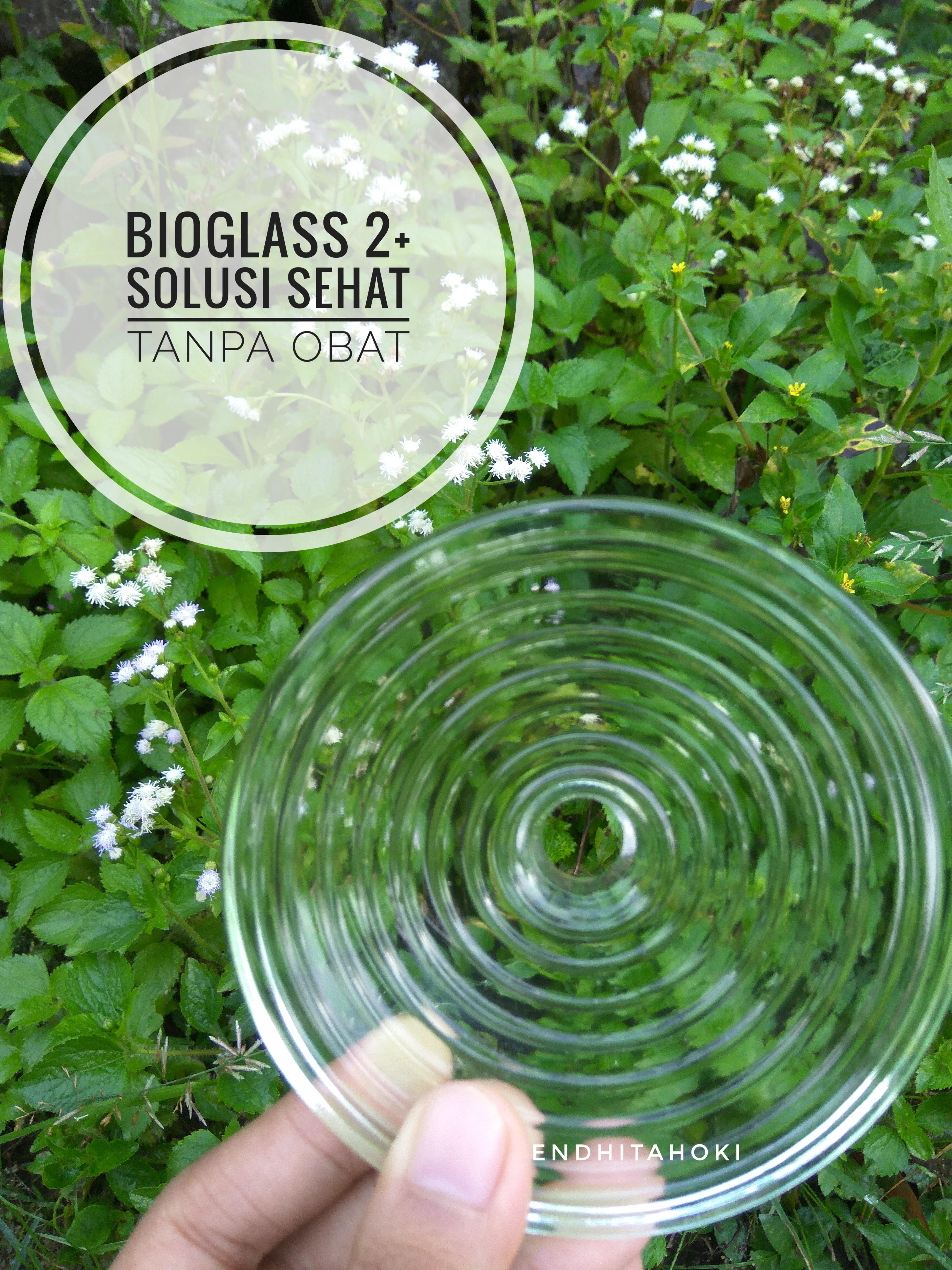 Bioglass Self Healing