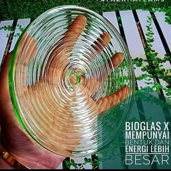 BIOGLASS X
