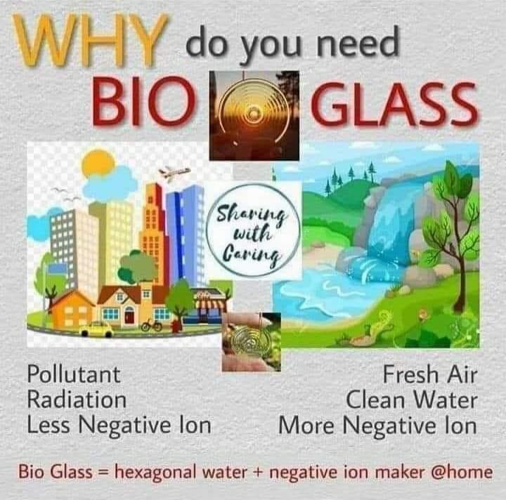 Bio Glass